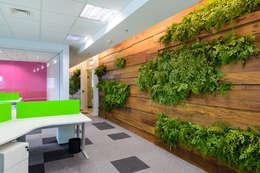 Озеленение  в . Автор – Svetlana Plantas Preservadas