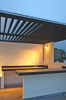 Vista Exterior- Roof Garden: Terrazas de estilo  por Estudio Meraki
