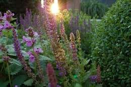 Jardins modernos por Biesot