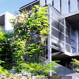 庭と一つになる家: ユミラ建築設計室が手掛けた家です。