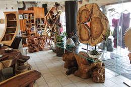 Paisajismo de interiores de estilo  por Cenquizqui