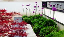 Projekty,  Ogród zaprojektowane przez 山越健造デザインスタジオ Kenzo Yamakoshi Design Studio