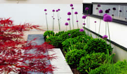 Jardines de estilo moderno por 山越健造デザインスタジオ Kenzo Yamakoshi Design Studio