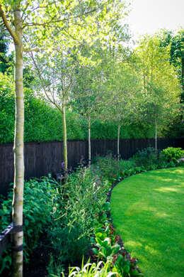Сады в . Автор – Barnes Walker Ltd