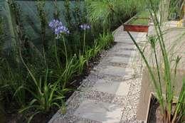 Jardines de estilo moderno de BAIRES GREEN
