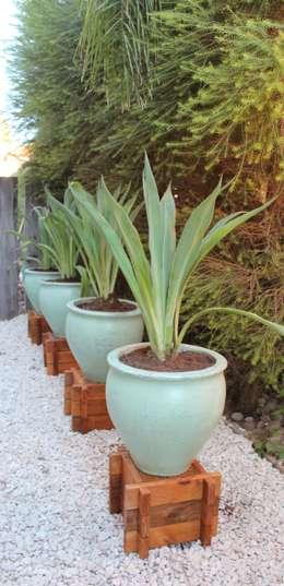 Jardines de estilo asiático por BAIRES GREEN