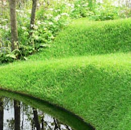 Vườn by Ruth Willmott