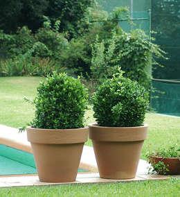 Jardín de estilo  por Hydroponika - Wnętrz i zieleń