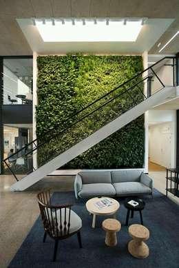 Jardines verticales: Jardines de estilo moderno por Green Gallery