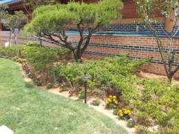 장흥리 한옥마을 내 주택: 금송건축의  정원