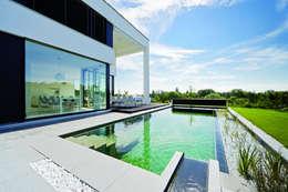 Den Garten Modern Gestalten Mit Einem Naturpool