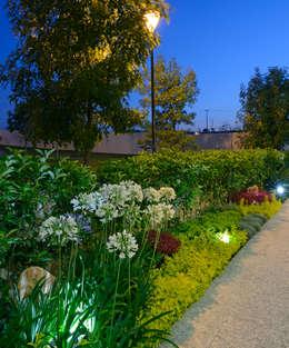modern Garden by VICTORIA PLASENCIA INTERIORISMO