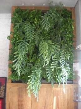 Top Gardens Paisagismo Vertical: tropikal tarz tarz Bahçe
