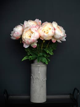 Large cream/pink Peony stem:  Household by Dust