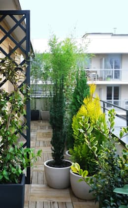 Barrière végétale: Jardin de style de style Minimaliste par Skéa Designer