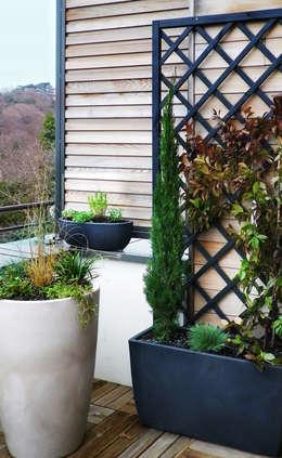 Сады в . Автор – Skéa Designer