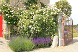 Bloementuin bij carre boerderij: landelijke Tuin door Hoveniersbedrijf Guy Wolfs