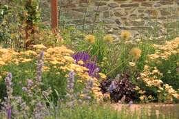 Projekty,  Ogród zaprojektowane przez Hoveniersbedrijf Guy Wolfs
