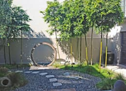 Vista Frontal: Jardines de estilo moderno por Terra