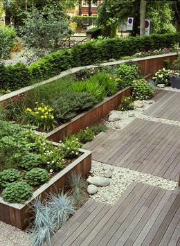 modern Garden by Bowles & Wyer