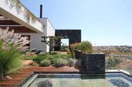 Jardins modernos por Riscos & Atitudes, Lda