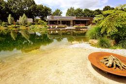 Zwemvijver Weert: moderne Tuin door Tuindesign & Styling Ves Reynders