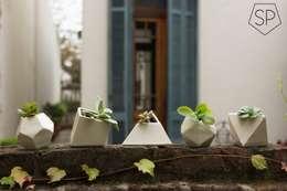 Jardín de estilo  por Sólido Platónico