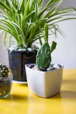 Objetos de decoración para interiores y exteriores: Livings de estilo moderno por SUD