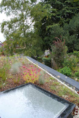 Сады в . Автор – LA Hally Architect