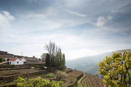 Casas de estilo rural por SAMF Arquitectos