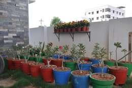 Projekty,  Ogród zaprojektowane przez DESIGNER GALAXY