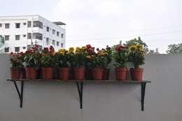 Jardines de estilo moderno por DESIGNER GALAXY