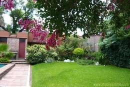 Jardines de estilo tropical de Alicia Bomchil