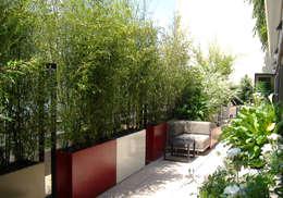 Bacs Image'In : Aménagement balcon - terrasse sur mesure: Jardin de style de style Moderne par ATELIER SO GREEN