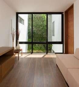 Salas / recibidores de estilo moderno por LGZ Taller de arquitectura