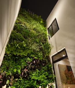 Jardines de estilo moderno por LGZ Taller de arquitectura