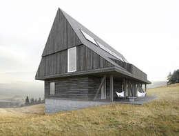 minimalistic Houses by BASK grupa projektowa