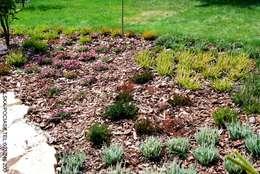 Wrzosowisko po założeniu: styl , w kategorii Ogród zaprojektowany przez Centrum ogrodnicze Ogrody ResGal
