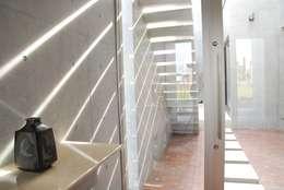 光: 本田建築設計事務所が手掛けた廊下 & 玄関です。