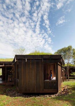 Jardines de estilo rural por IR arquitectura