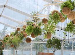 Giardino in stile in stile Moderno di fiu jardins, lda.