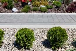 Jardines de estilo moderno por Modern Line