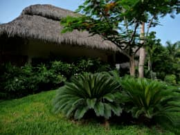 Villa in Nuevo Vallarta: Jardín de estilo  por Tropical America landscaping