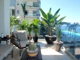 Macetas: Jardines de estilo moderno por Tropical America landscaping