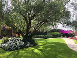 Olivos 611, Jurica, Querétaro: Jardines de estilo mediterraneo por Hábitas