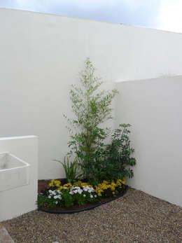 modern Garden by Hábitas