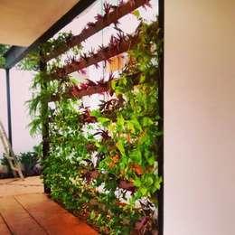Jardines de estilo moderno por Bambootec