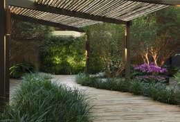 Jardines de estilo minimalista por BAMBU CARBONO ZERO