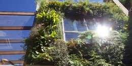 Paredes y pisos de estilo  por Ecoeficientes