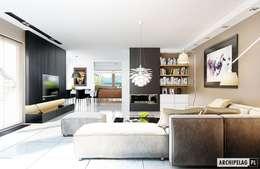 modern Living room by Pracownia Projektowa ARCHIPELAG